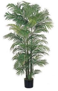 hawaiian-decorating-areca-silk-palm-tree