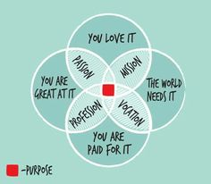 Ikigai This brings it all together