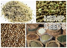 hemp seeds= super food good source of protein! Can be put into smoothies, bread, or can be sprinkled on top of a salad!