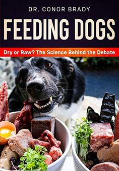 Raw Food Recipes, Diet Recipes, Raw Feeding For Dogs, Whole Food Diet, Dog Diet, Can Dogs Eat, Dry Dog Food, Cat Food, Food Industry