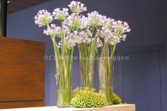 Glass Vase, Flowers, Decorations, Business, Home Decor, Florals, Decoration Home, Room Decor, Dekoration