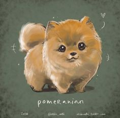 Cute Dog Drawing, Bunny Drawing, Cute Animal Drawings, Cute Pomeranian, Cute Kawaii Animals, Japanese Dogs, Dog Wallpaper, Cute Dogs And Puppies, Dog Portraits
