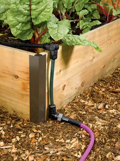 Apply water just where you want it — and not where you don't. With the Snip-n-Drip Raised Bed Soaker System you can easily create a streamlined watering system for your raised beds. Great for elevated raised beds and patio gardens, too.
