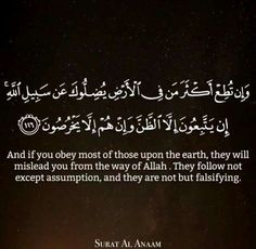 And if you obey most of those upon the earth, they will mislead you from the way of allah , they follow not except assumption, and they are not but falsifying
