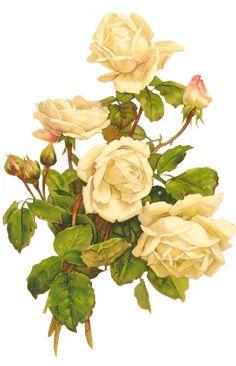 https://blackwidow12.files.wordpress.com/2014/02/yellow-roses-bumblebee.png