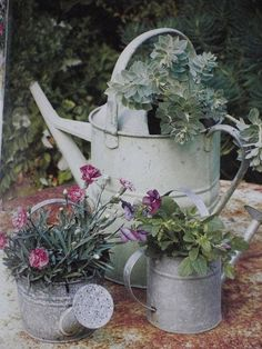 Cool 35 Beautiful Flower Garden on DIY Pot toparchitecture. Cool 35 Beautiful Flower Garden on DIY Pot toparchitecture. Container Flowers, Container Plants, Container Gardening, Beautiful Flowers Garden, Beautiful Gardens, Garden Planters, Galvanized Planters, Balcony Garden, Garden Projects