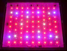 140 Watt LED Grow Light, Plantphotonics, Best LED Grow Lights