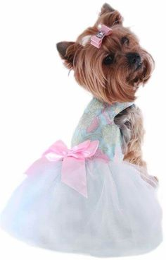 Puppy Clothes - Clothes Pet, Dog Clothes, Dresses For Dogs ... #PuppyClothes