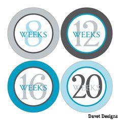 12 Weekly Pregnancy Mamatobe Maternity Waterproof by DavetDesigns2, $8.00