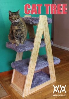 How to make a cat tree #1x4WoodProjectsDiy
