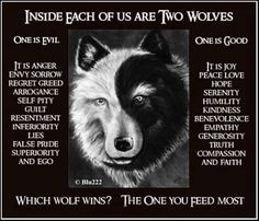 Wolf parable