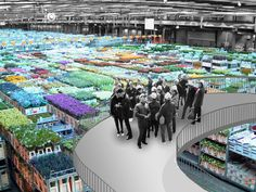 OMA Presents Masterplan for Floriade 2022