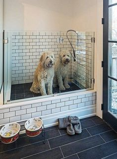 dog washing station in laundry room \ dog washing station in laundry room ; dog washing station in laundry room diy ; dog washing station in laundry room pets Dog Washing Station, Dog Station, Laundry Station, Dog Feeding Station, The Beast, House Ideas, Dog Rooms, Rooms For Dogs, Dog Shower