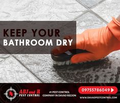 Best Pest Control, Pest Control Services, Davao, Earthworms, Telephone, Outdoors, Spaces, Website, Bathroom