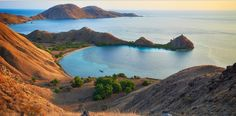 The Island Of Komodo Tours & Travel Packages http://www.boatcharterkomodo.com/tour-packages #komodotours #komodotour #komodisland #komodoislandtours #komodotravel