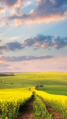 Nature landscape wallpaper for your iPhone X from Everpix Beautiful Nature Pictures, Amazing Nature, Beautiful Landscapes, Beautiful Places, Landscape Pictures, Landscape Art, Landscape Photography, Nature Photography, Photography Tips