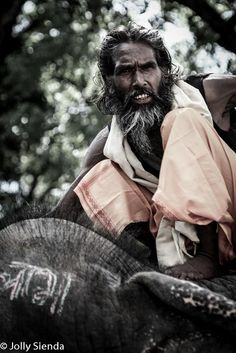 Portrait of an elephant trainer in India sitting on his elephant.  by Jolly Sienda