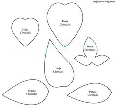 MAGIC-COLORING   Clematis flower template