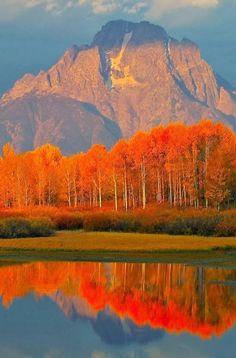 Autumn in the Grand Tetons, Jackson Hole, Wyoming