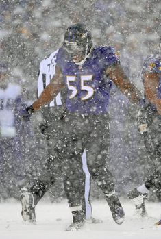 Ravens linebacker Terrell Suggs celebrates after tackling the Vikings' Adrian Peterson in the first quarter.