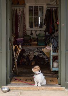 Apollo guarding the door of 36 Bourne Street