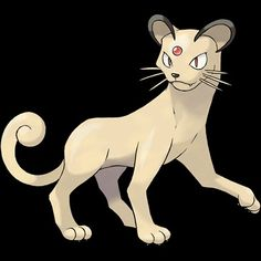 "053-Persian, classy cat Pokemon. Type-normal. Ability-limber or technician, unnerve, hidden ability. Height-3'03"". Weight-70.5 lbs."