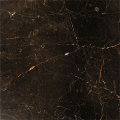 St Laurent Polished Marble Tiles 18x18 - Marble Systems, Inc.