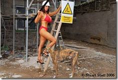 health_and_safety_structural_support