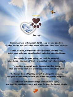 We have had our share of losses in our family. On March 3rd, 2015, we had to end our 13 year old Toy Poodle's suffering. He'd been in pain and suffering for a while and we knew that it was the right thing to do. But I believe we feel a degree of guilt. When I read this, I felt reassured and was even more at peace with our decision.