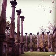 Port Gibson, Mississippi: The Windsor Ruins  Towering columns nearly lost in the woods, all that remain of the largest antebellum plantation house in Mississippi.