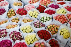 Picking the best market flowers with by apairandaspare, via Flickr
