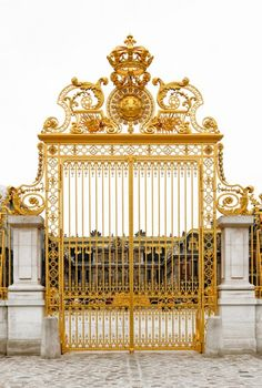 Come on in!  Nothing makes a better entrance to my parties than a gold gate --- Versailles Gate