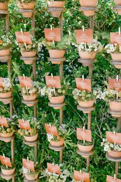 Escort card display was designed to look like an English garden. Photo: @ktmerry