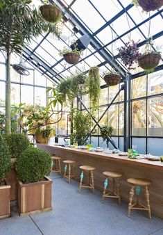 Roy Choi's rooftop greenhouse restaurant Commissary