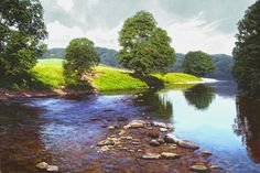 Michael James Smith is a famous British landscape artist who was born as the son of artist David Smith. He was born in Essex in 1976. Michael was inspired