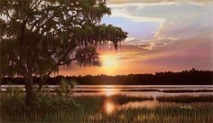 ***The South Carolina low country. Heaven on earth! Beautiful World, Beautiful Places, Craggy Gardens, South Carolina Homes, Down South, Low Country, Heaven On Earth, Great Photos, Art Gallery