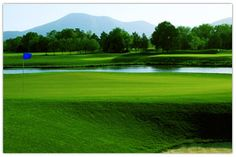 Blue Ridge Mountain -Wintergreen Resort.  About an hour from Charlottesville.  Golf, Skiing, Spa...etc.