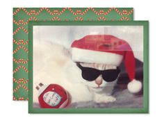 Hope your Holiday Season is Puuurrrrrfect!