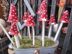 Pilze, getöpfert,Keramik