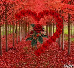 Most popular Picmix [p. 3 on Beautiful Love Pictures, Beautiful Gif, Beautiful Roses, Heart Wallpaper, Love Wallpaper, Gif Bonito, Beau Gif, Animated Heart, Love You Gif