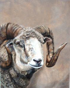 Schaap  Ram! Sheep Acrylverf op doek 80x100cm. Painted by Gerrie Mathijssen WWW.GERRIEMATHIJJSEN.NL