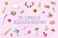 Free Watercolor Illustration Pack