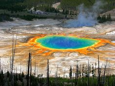 Grand Prismatic Spring- Yellowstone National Park, Wyoming I wanted visit this park so bad! Yellowstone Nationalpark, Yellowstone Park, Oh The Places You'll Go, Places To Travel, Places To Visit, All Nature, Hot Springs, Wyoming, Vacation Spots