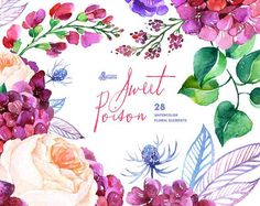 Sweet Poison: 28 Watercolor Elements hydrangea roses poppy wedding invitation floral greeting card diy clip art purple flowers USD) by OctopusArtis Floral Bouquets, Paper Background, Watercolor Flowers, Watercolor Images, Watercolour Paintings, Purple Flowers, Floral Flowers, Fresh Flowers, Clipart