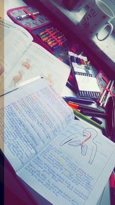 #study #school  #biology #
