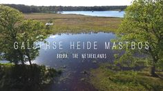 Galderse Heide - Vlonderpad, Mastbos, Breda, The Netherlands - drone aerials DJI Phantom 4 Drone Filming, Air Drone, Dji Phantom 4, Netherlands, Sky, Mountains, World, Beach, Youtube