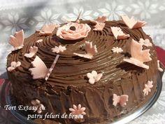 Tort Extasy cu patru feluri de bezea Pudding, Desserts, Cakes, Recipes, Food, House, Flan, Postres, Cake Makers
