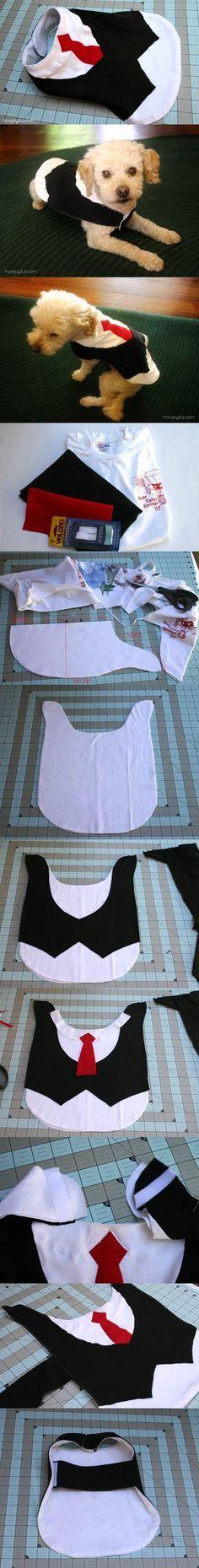 DIY bonito Dog Vest 2