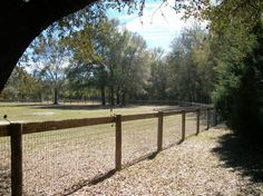 Horse Farm For Lease in Brooksville, Florida: 5 acres on Forest, mobile, stable, pool Brooksville, Fl