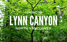 Vancouver Review: Hiking Lynn Canyon #vancouver #canada #hiking